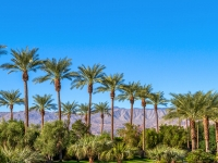 AESP 30th Annual Conference and Expo